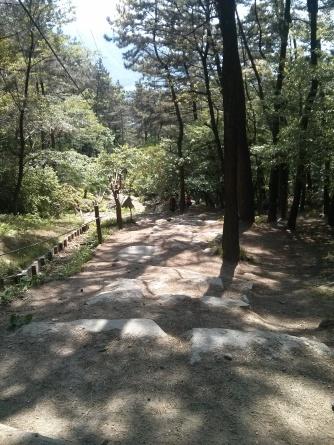 Seokbulsa directions 4